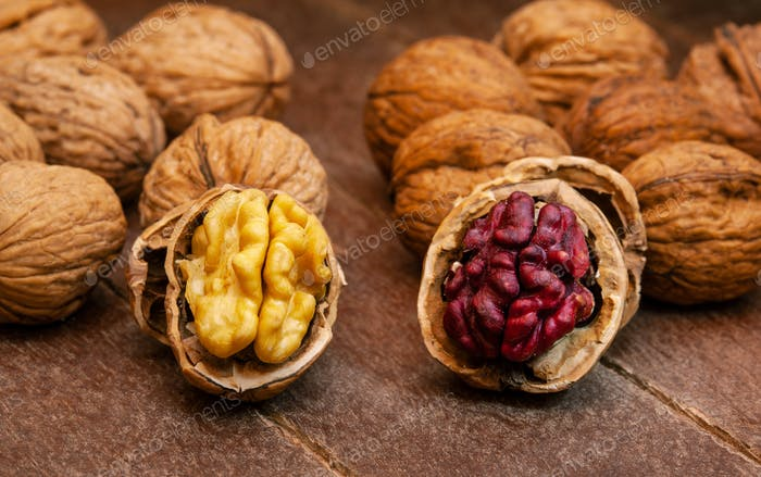 Red Danube and Juglans regia walnuts