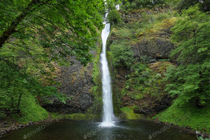 Horsetail falls. in Columbia River Gorge
