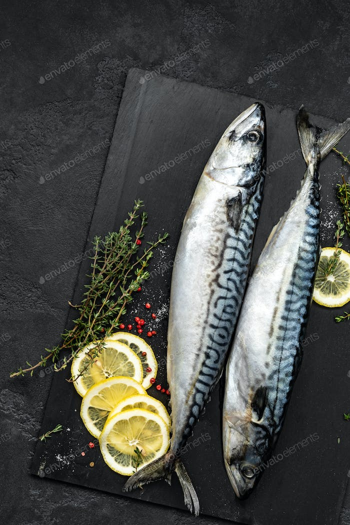 Mackerel. Fresh raw fish with ingredients for cooking, top view, flat lay