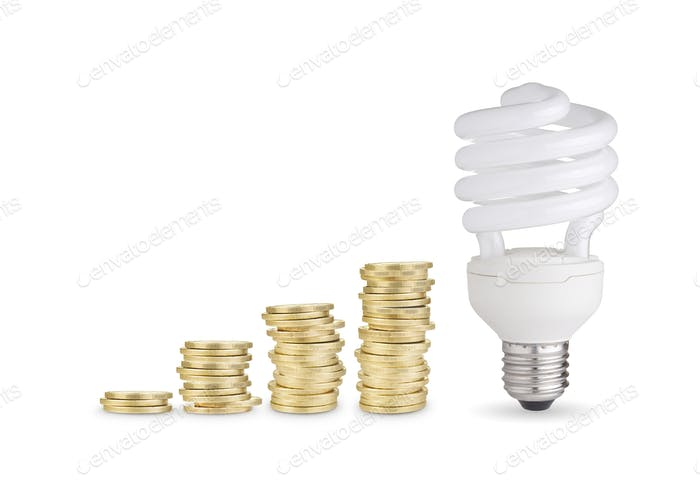 Coins and energy saver bulb