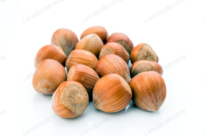 hazelnuts with shell on white background