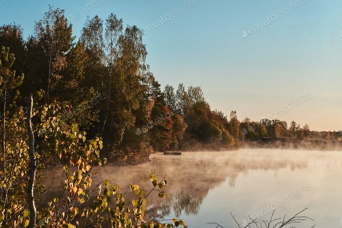 Schöner nebliger See mit Herbstwald