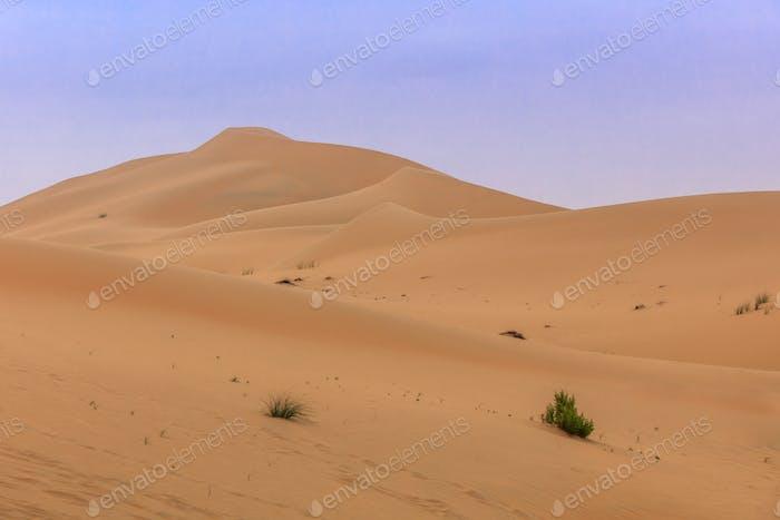 sand dunes in Abu Dhabi desert