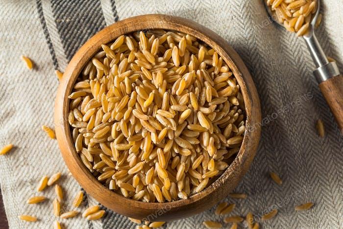 Raw Bio Trockene Kamut Beeren Korn