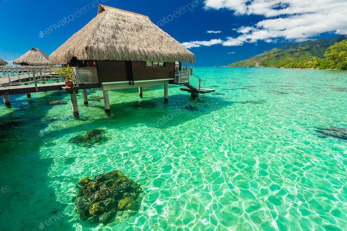 Bungalows und grüne Lagune, Moorea, Französisch-Polynesien