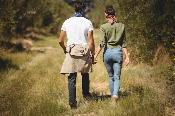 Rear view of couple walking at olive farm
