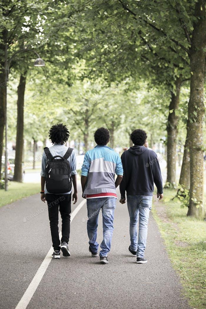 Three teenage boys walking in park