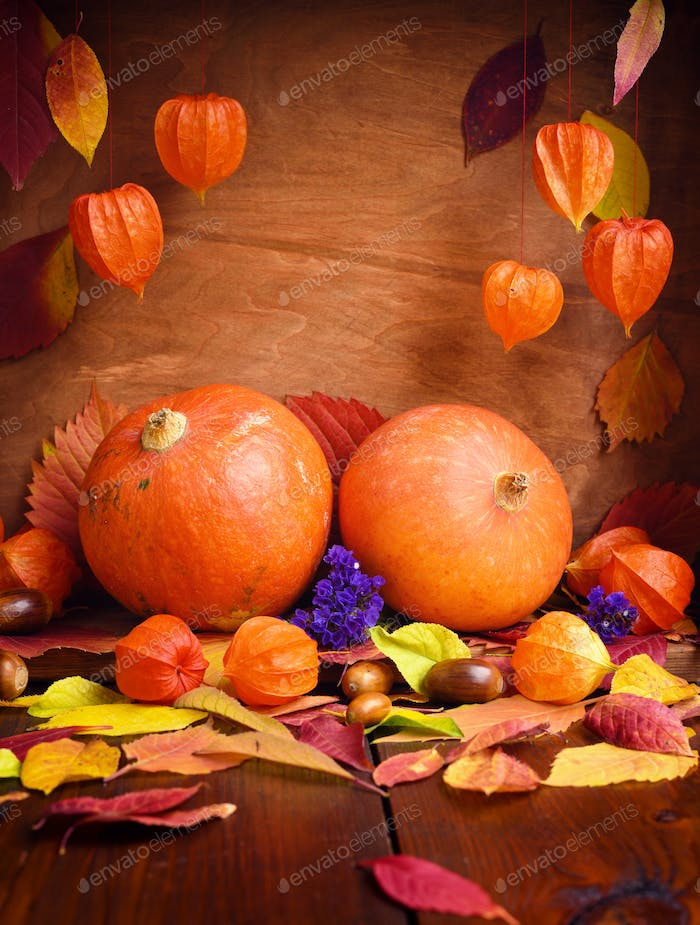 Autumn cozy still life. Pumpkins, autumn leaves and physalis on