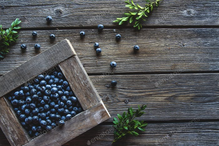 Freshly picked blueberries are in a wooden box. Healthy food, health