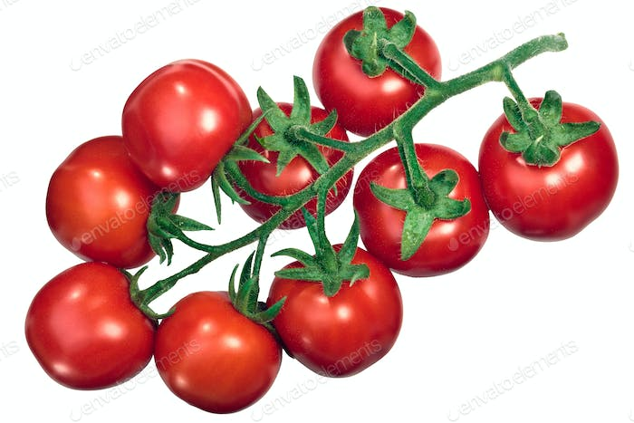 Cluster of tomatoes on the vine tov, top