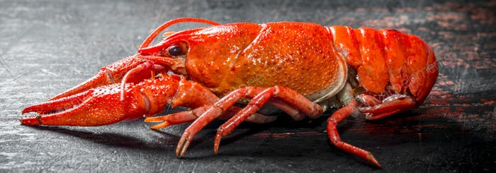 Red boiled crayfish.