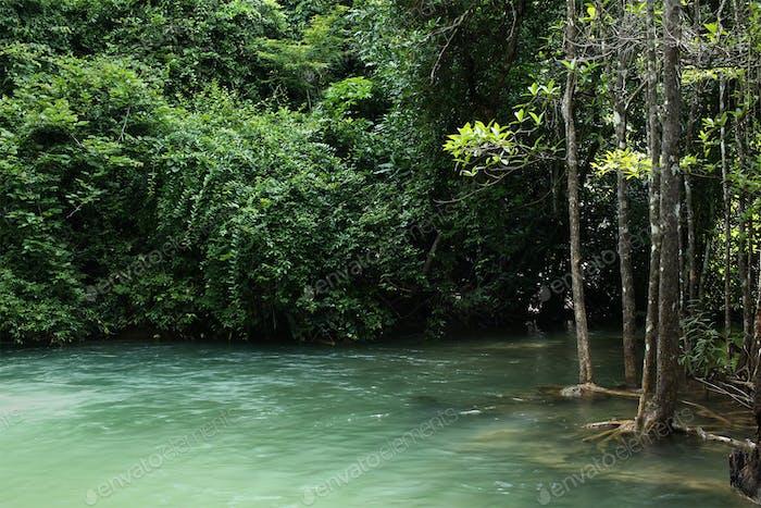 Cascada de Tailandia en Kanchanaburi