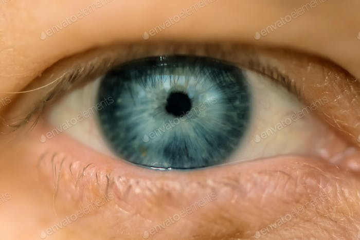 Single blue female eye, close up