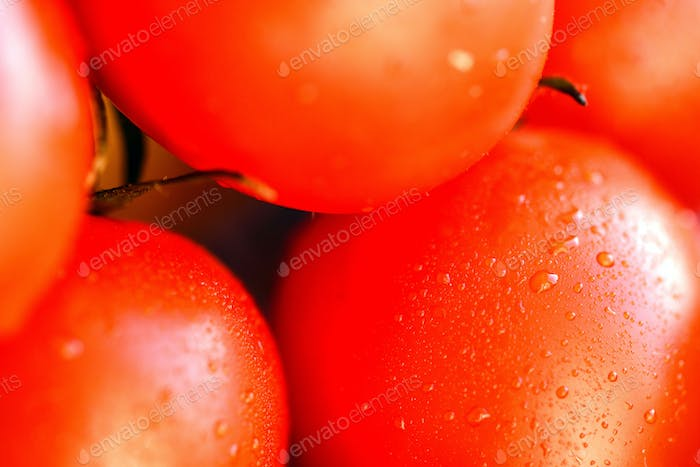 Close-up of red ripe fresh tomatoes