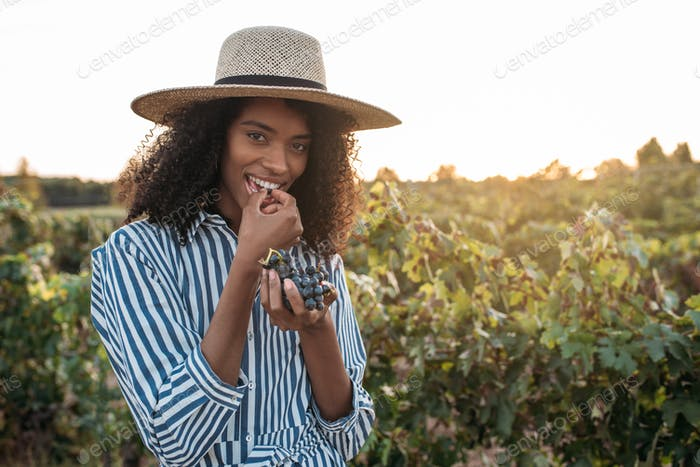 Happy young woman in a straw hat eating grapes in a vineyard