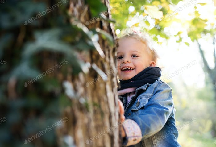 A portrait of a small toddler girl standing in autumn forest. Copy space
