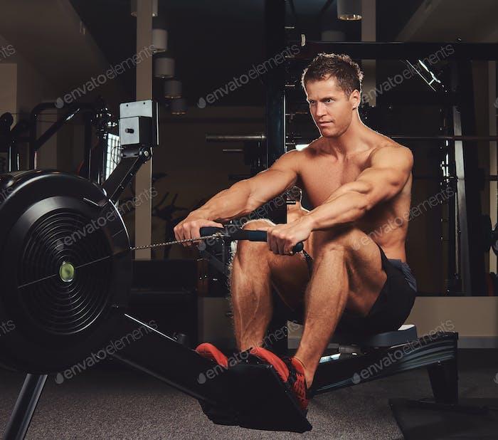 Schöner muskulöser Fitness männlich tun Übung auf dem Rudergerät.