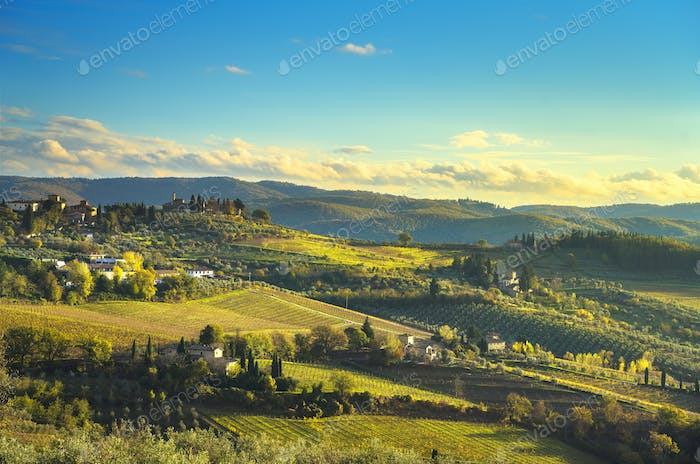 Panzano in Chianti vineyard and panorama at sunset. Tuscany, Ita