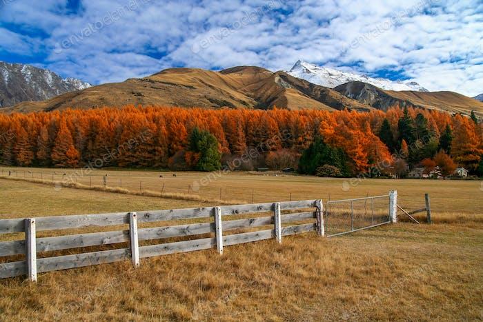 Rural mountain Scenery