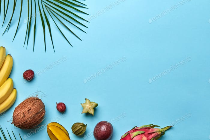 Corner frame of a green palm branch and a variety of tropical fruits on a blue background with space