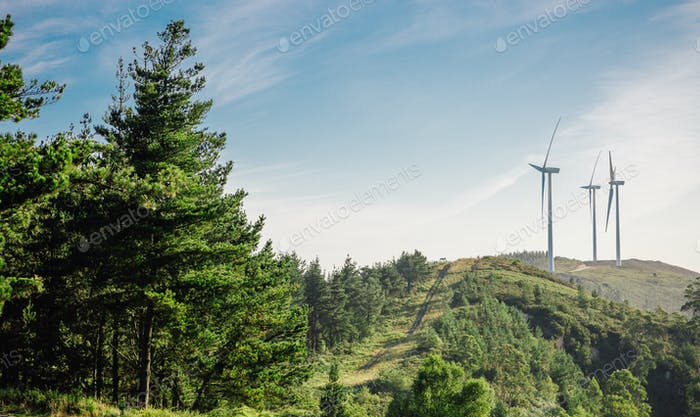 Forest landscape with wind turbines in the background