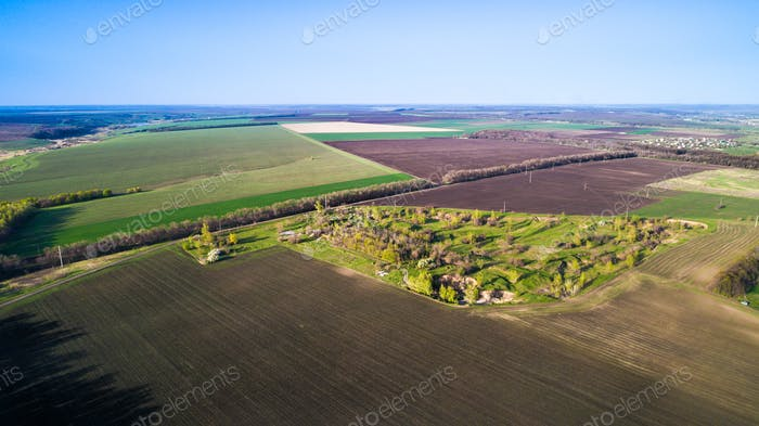 Flying over fields sown with agricultural crops