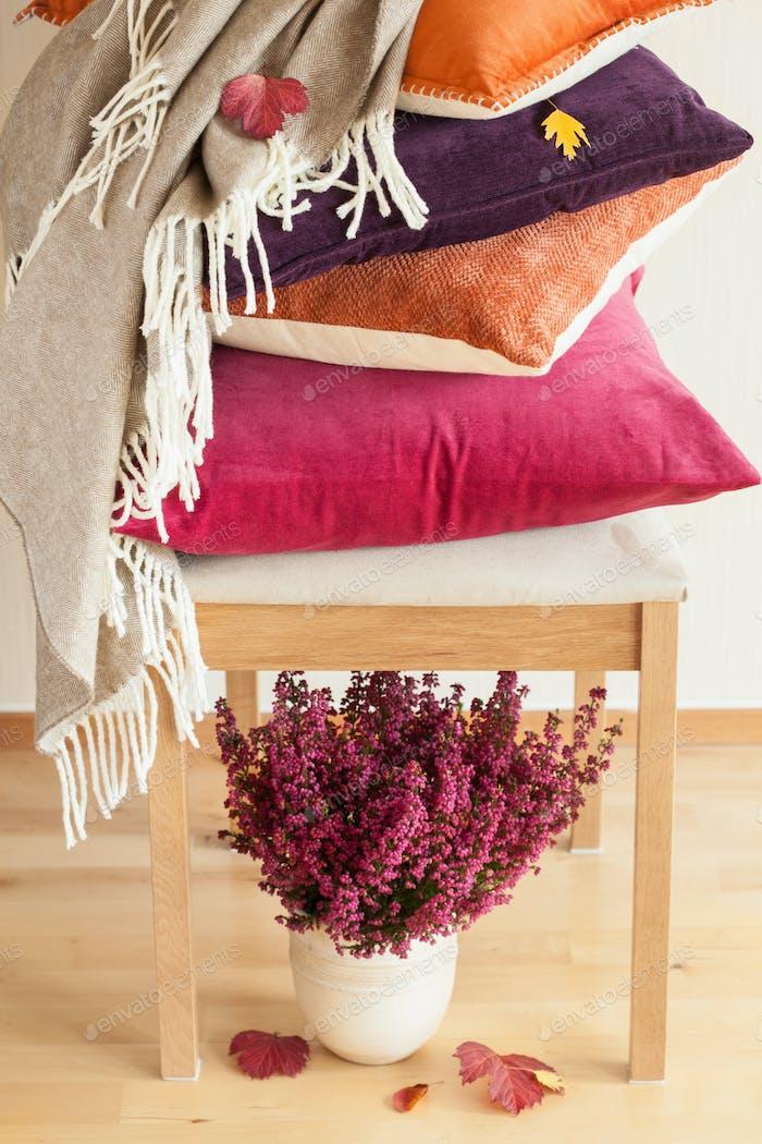 bunte Kissen werfen gemütliche Hause Herbst Stimmung Blumenblatt