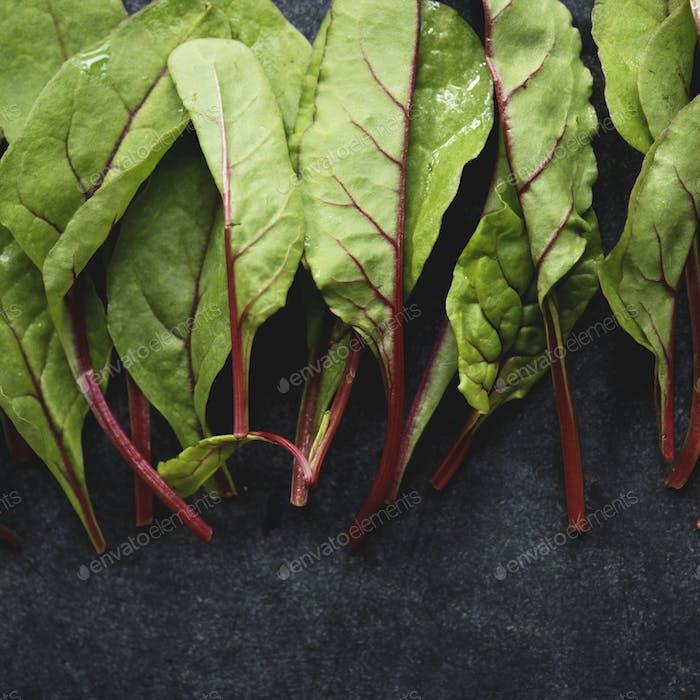 Primer plano de hojas frescas de acelgas orgánicas sobre Fondo negro