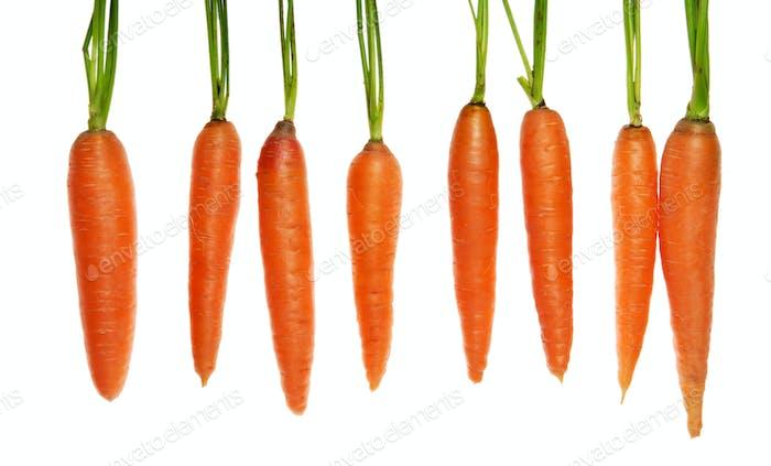 acht Karotten