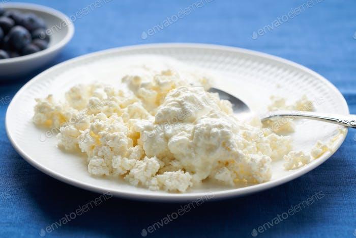 Teller mit frischem Hüttenkäse, Frühstück mit Milchprodukten, Eiweißnahrung