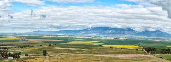 Panoramic farm landscape seen from the Piekenierskloof Pass