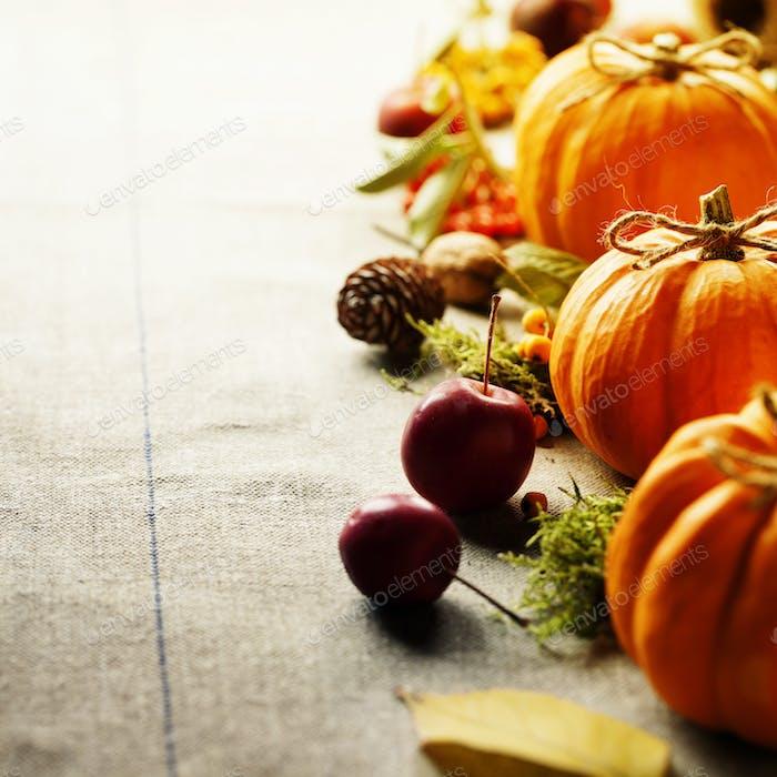 Pumpkins composition