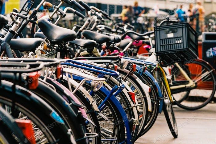 Fülle von Fahrrädern