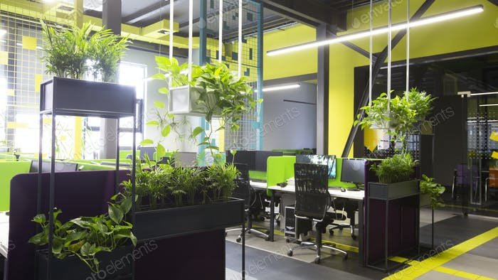Modern natural office interior with green plants and computers