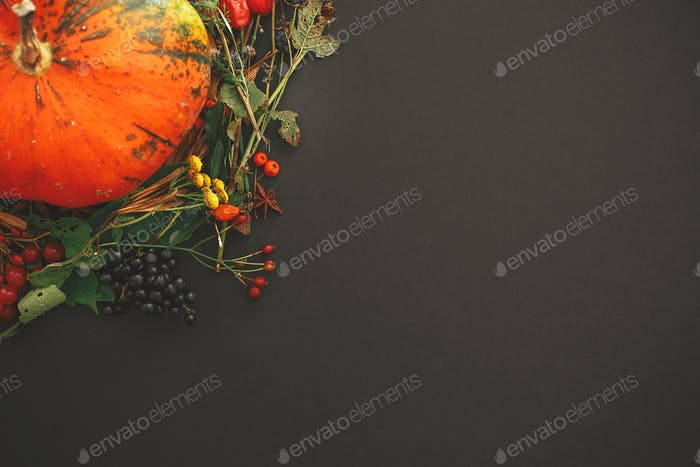 Autumn flat lay. Pumpkin in autumn wreath of fall leaves