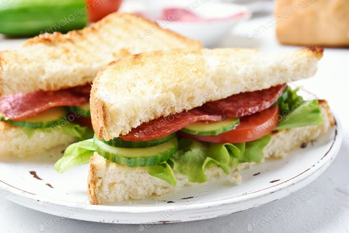 Club sandwich, close up view