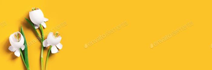 Concept Flowers of Eggshells, Yellow Festive Background