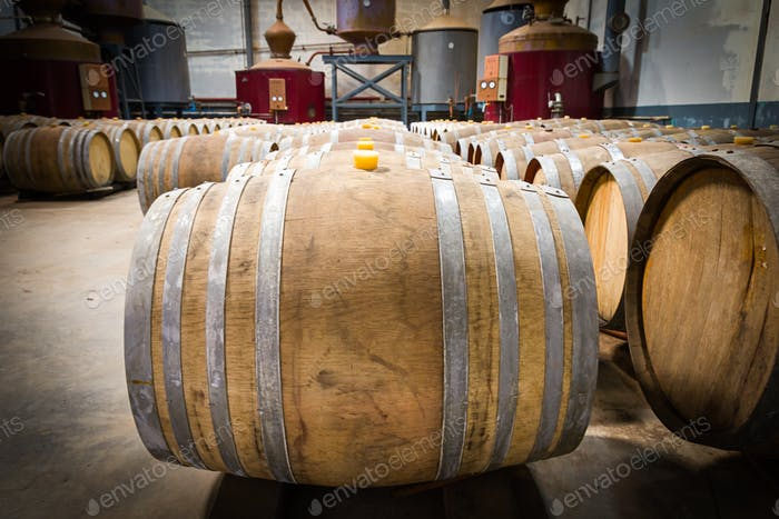 Wine barrels in the cellar of the winery-4