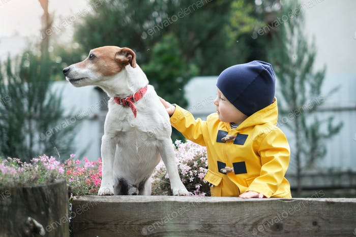 Small kid with dog