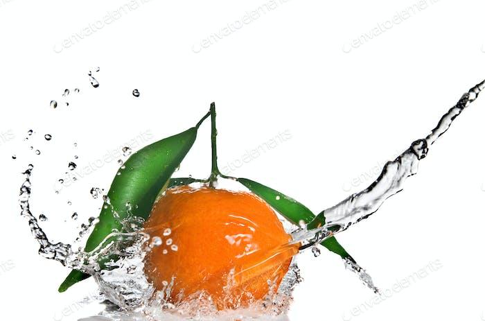 Mandarine mit grünen Blättern und Wasser auf weiß isoliert