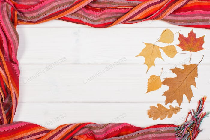Frame of womanly shawl and autumnal leaves, clothing for autumn or winter, copy space for text