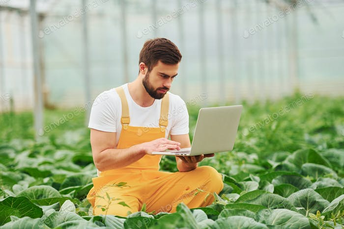 Young greenhouse worker in yellow uniform with laptop in hands have job inside of hothouse