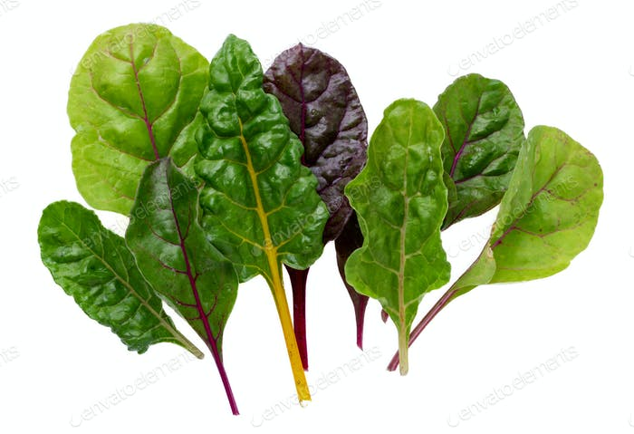 Swiss chard leaves on white background