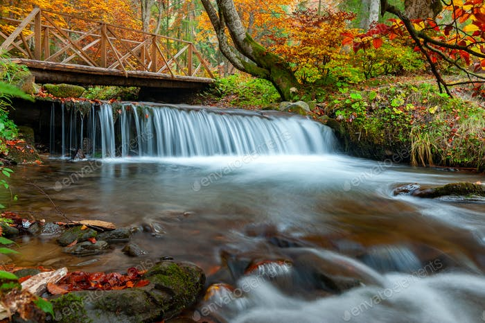 Bergwasserfall im Herbstwald