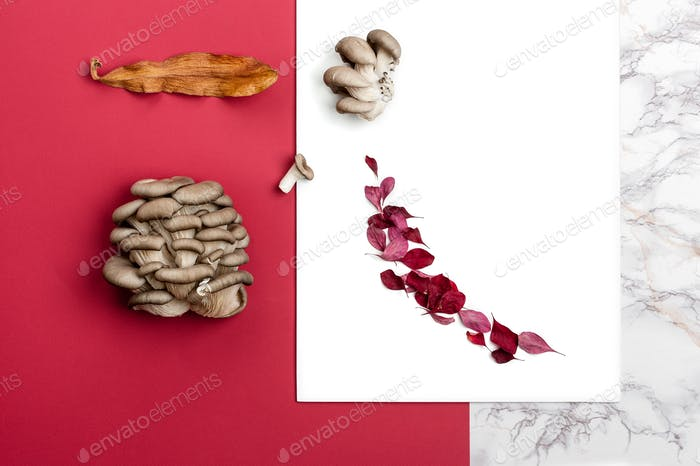 A composition of fresh oyster mushrooms and dry autumn leaves on