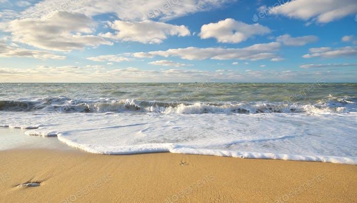 Sandige Küste am Tag.