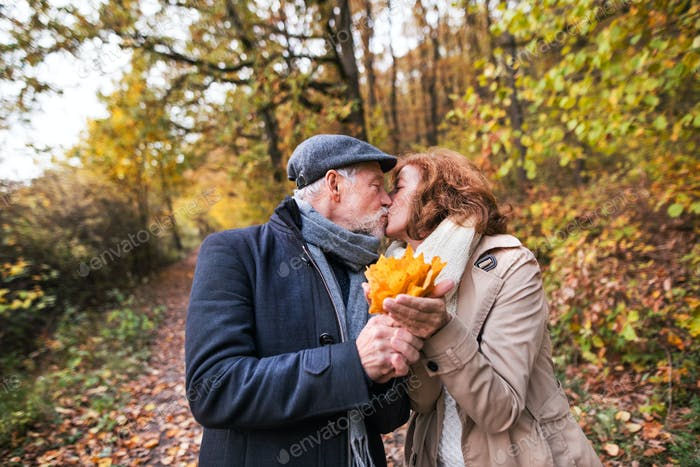 Senior couple on a walk in a forest in an autumn nature, holding leaves and kissing.
