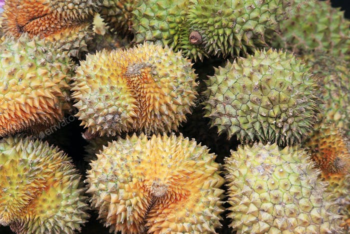 ripe fruit of durian