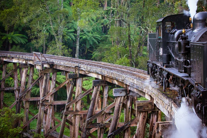 Puffing Billy Train