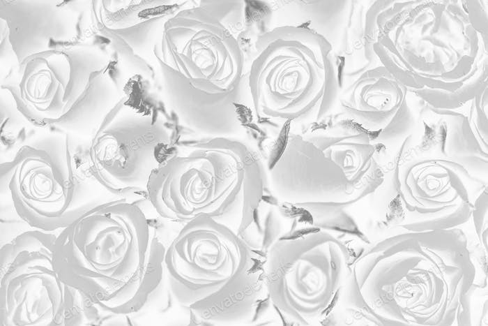 Negative effect floral patterned background